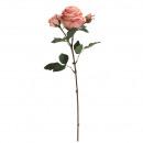 Rose Dior gefüllt, Länge 64cm, 2 Blüten, 1 Knosp